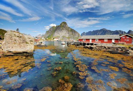 Kontiki, Lofoten