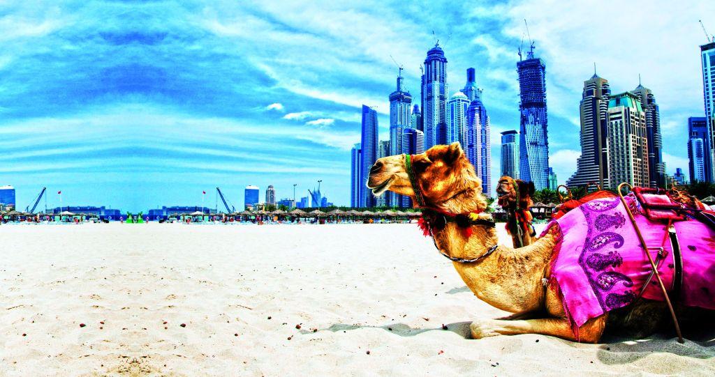 16ht-010-10-Dubaineu