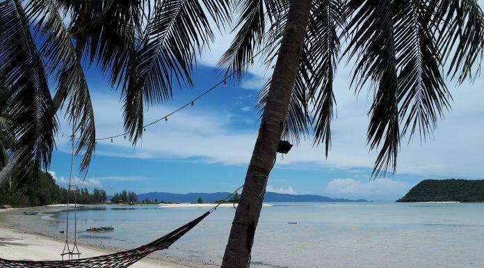 Thailand Strand Hängematte Palme